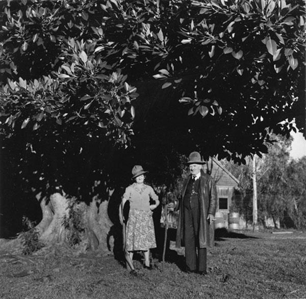 Bonny & Clyde, Ardglen New South Wales 1957