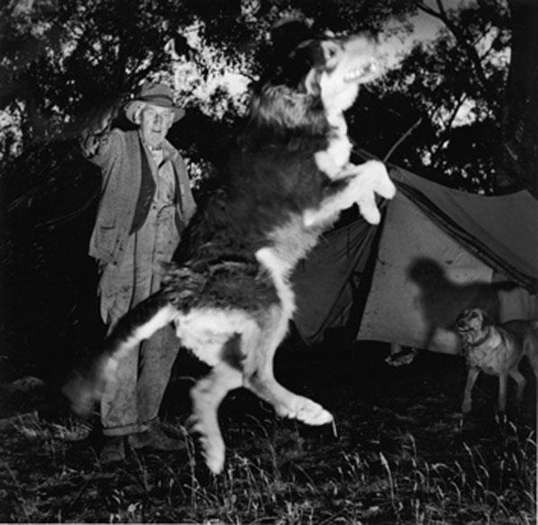 Campfire Cabaret, Murray River, 1957