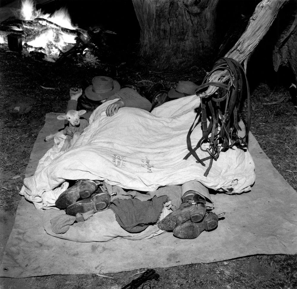 Drovers Asleep, Little Topar, New South Wales, 1956
