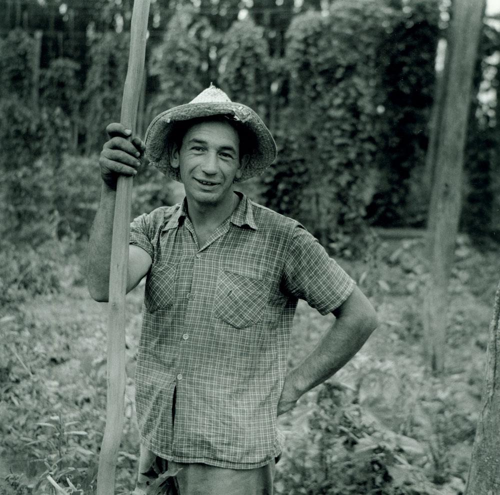 Hop picker, 1956