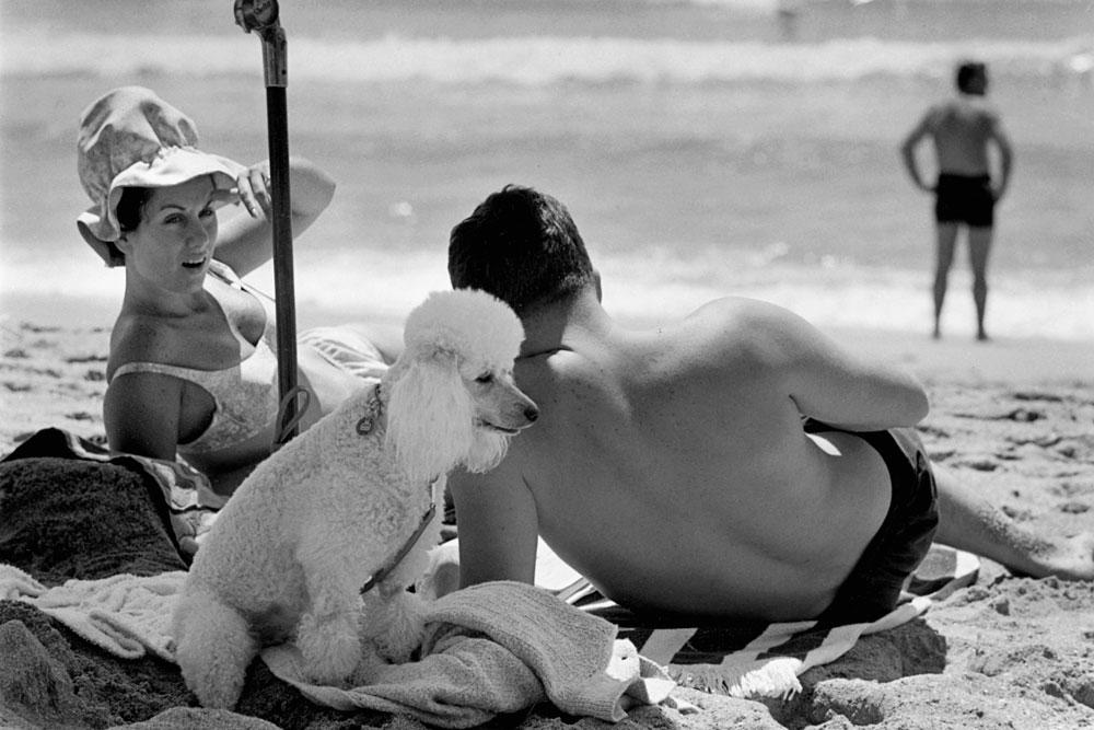 Narrabeen, 1965